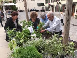 02-urban-gardening-gallusplatz-2017