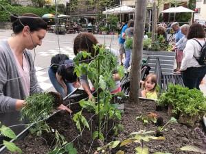 04-urban-gardening-gallusplatz-2017