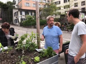 06-urban-gardening-gallusplatz-2017