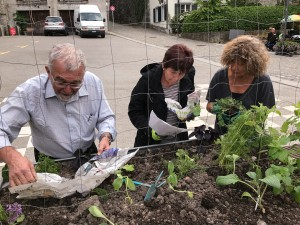 07-urban-gardening-gallusplatz-2017