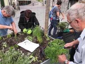 12-urban-gardening-gallusplatz-2017