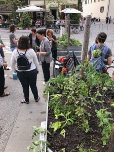 13-urban-gardening-gallusplatz-2017