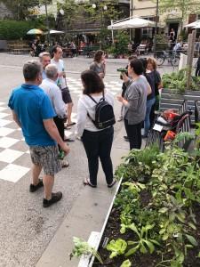 15-urban-gardening-gallusplatz-2017